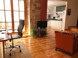 Born-c/Rec, acollidor loft amb terrassa